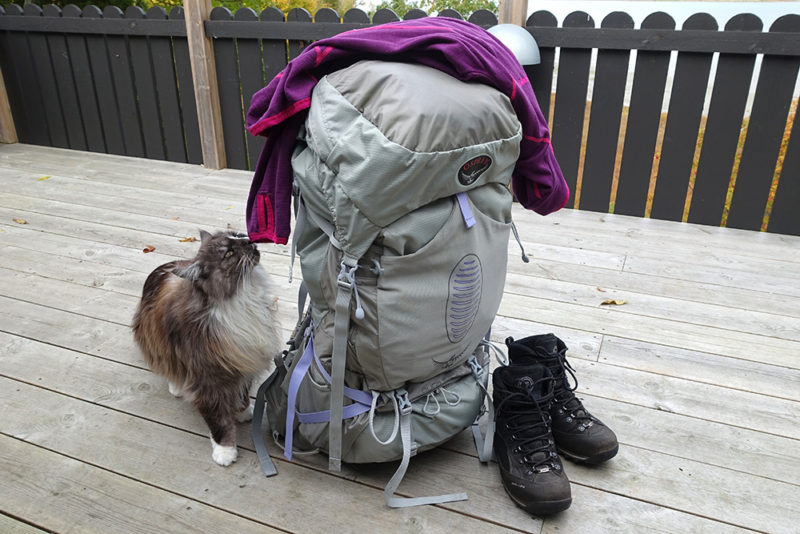 backpack inspection