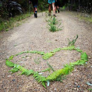 happy holidays - trail love