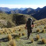 Kaikoura Ranges - walking out