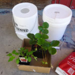 Vanlife - making a garden