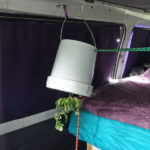 Vanlife - hanging garden in transit
