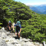 Climbing Chalice Knob in Richmond Forest Park