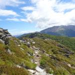 Mt Rintoul views