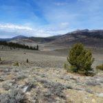 PCT - High Sierra