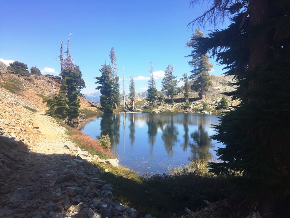 PCT: Echo Lake — Burney